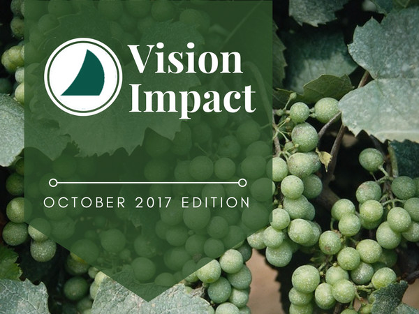 vision-impact-2017-poster